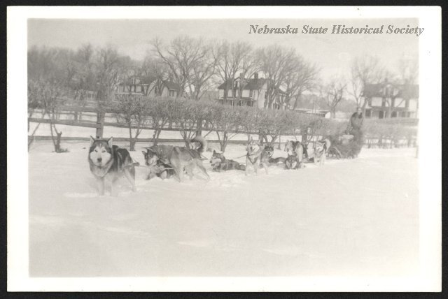 A team of nine Huskies hitched to a sled with a man on it, with Ft. Robinson officers' quarters in the background. RG1517.PH000052-000097